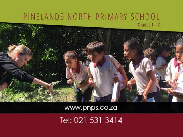 Pinelands North Primary School