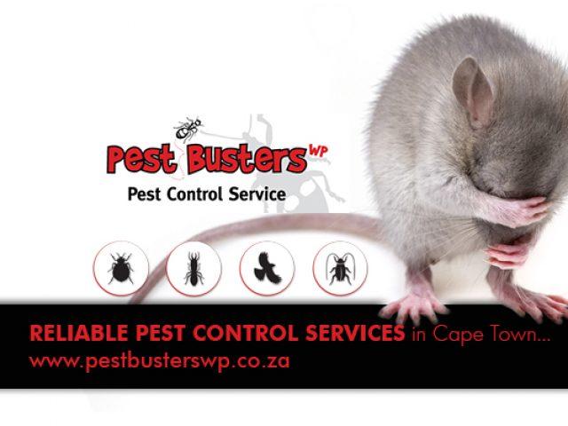 Pest Busters WP