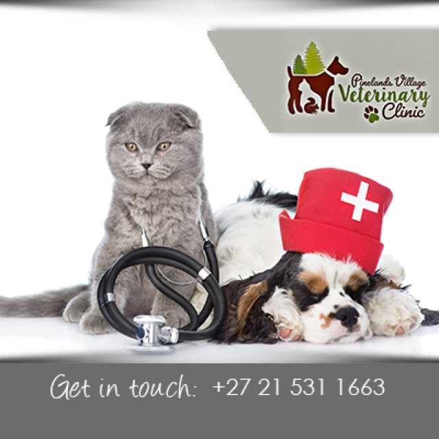 Pinelands Village Veterinary Clinic